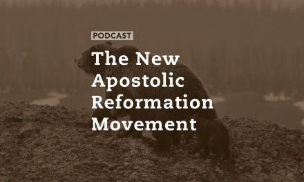 The New Apostolic Reformation Movement
